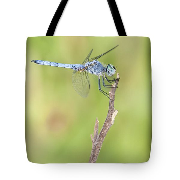 Tote Bag featuring the photograph Blue Dasher by Bryan Keil