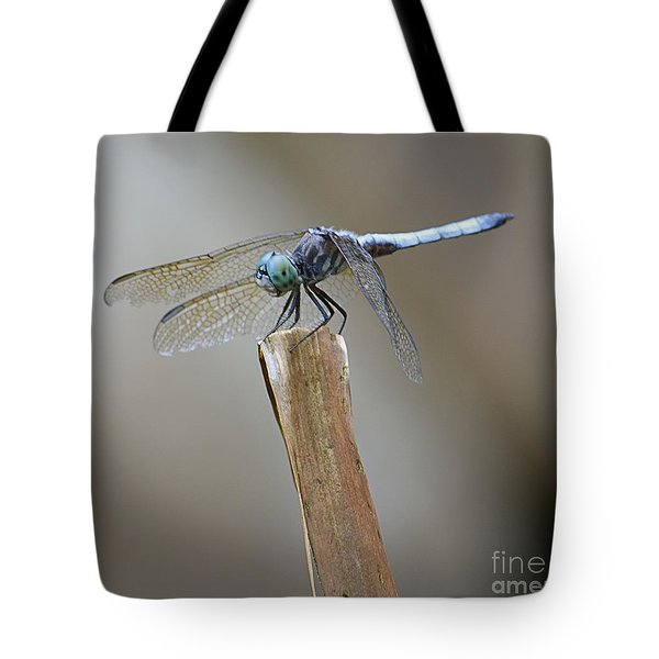 Blue Dasher Tote Bag by Randy Bodkins