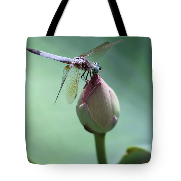 Blue Dragonflies Love Lotus Buds Tote Bag