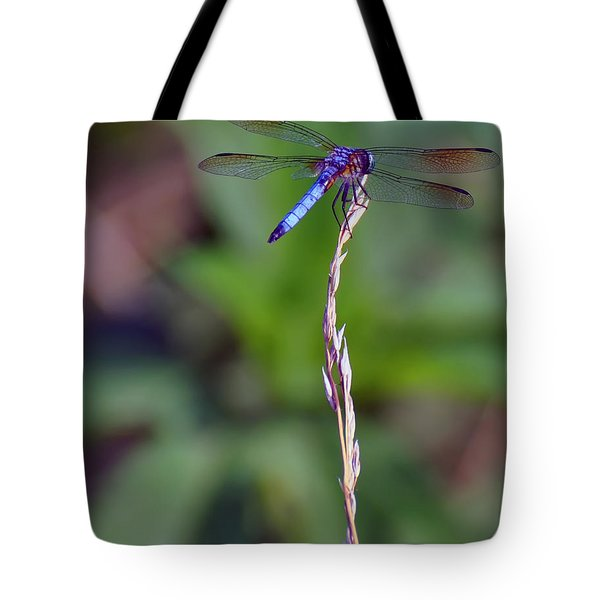 Blue Dragonfly On A Blade Of Grass  Tote Bag