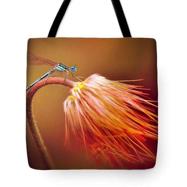Blue Dragonfly On A Dry Flower Tote Bag