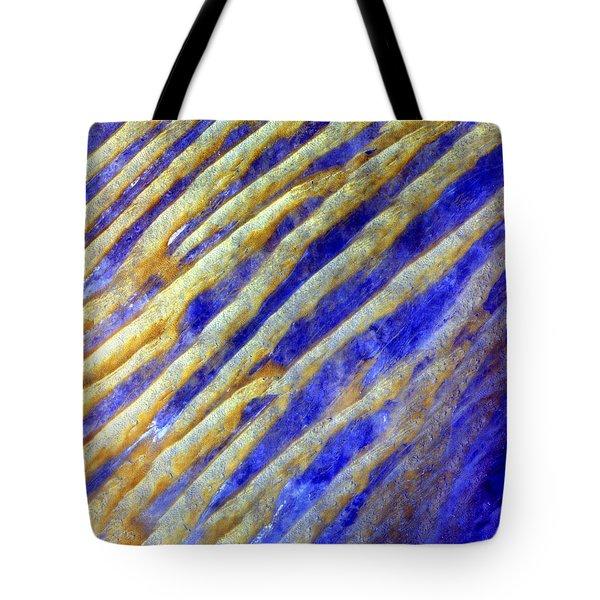 Blue Dunes Tote Bag by Adam Romanowicz