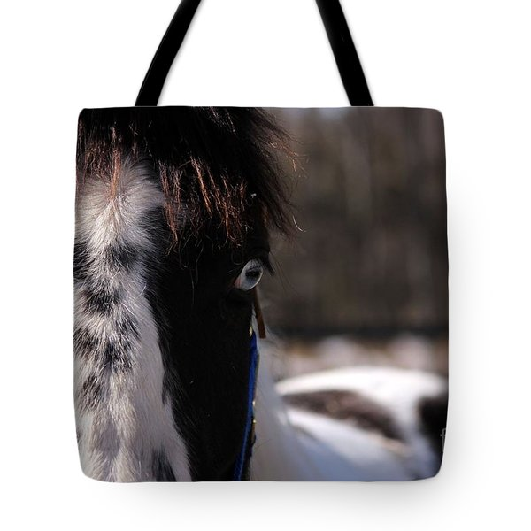 Blue Eye Stare Tote Bag