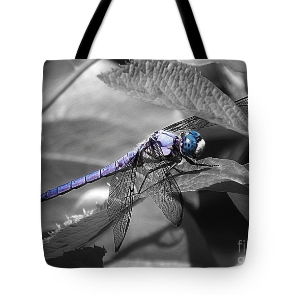 Blue Eyed Dragonfly Tote Bag