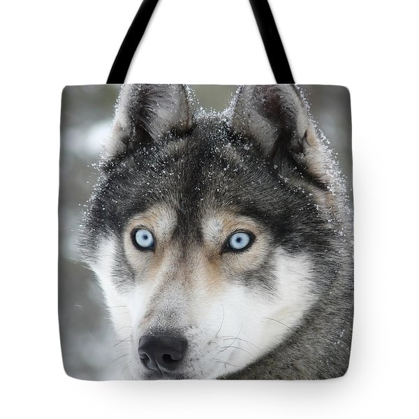 Blue Eyes Husky Dog Tote Bag