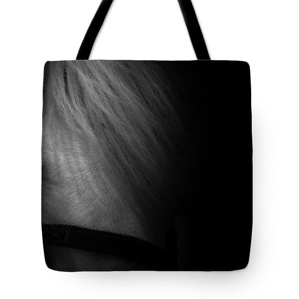 Blue Eyes Tote Bag by Shane Holsclaw