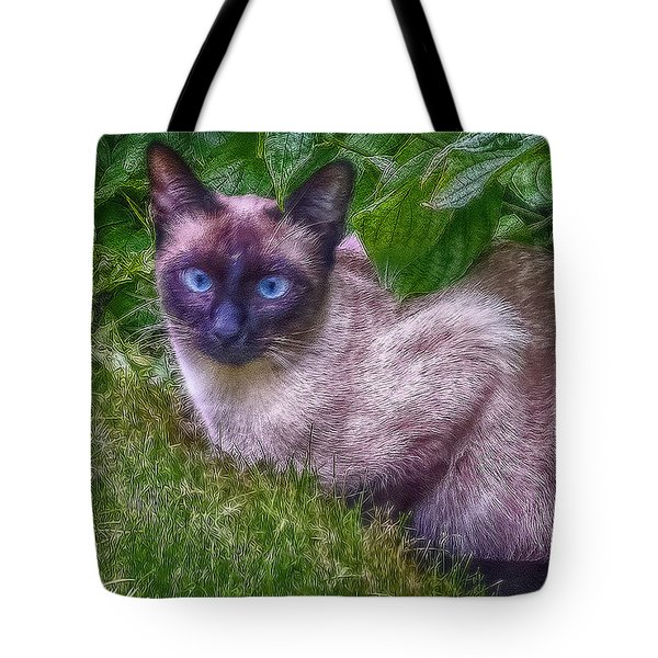 Tote Bag featuring the photograph Blue Eyes - Signed by Hanny Heim