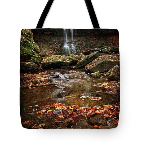 Blue Hen Falls In Autumn Tote Bag