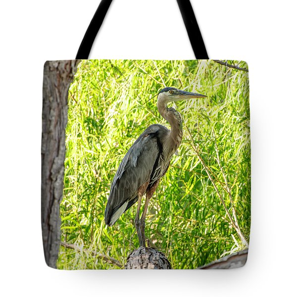 Blue Heron At Rest Tote Bag