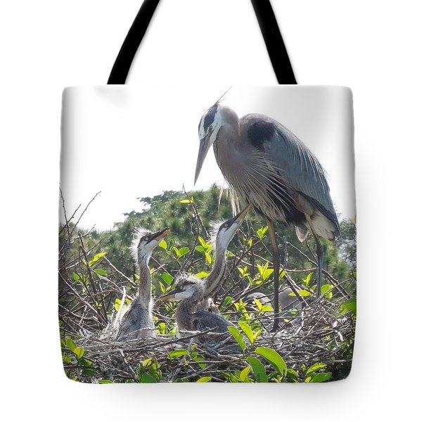 Tote Bag featuring the photograph Blue Heron Family by Ron Davidson
