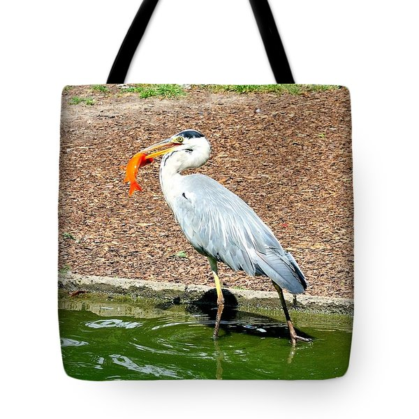 Tote Bag featuring the photograph Blue Heron Feeding by Joe  Ng