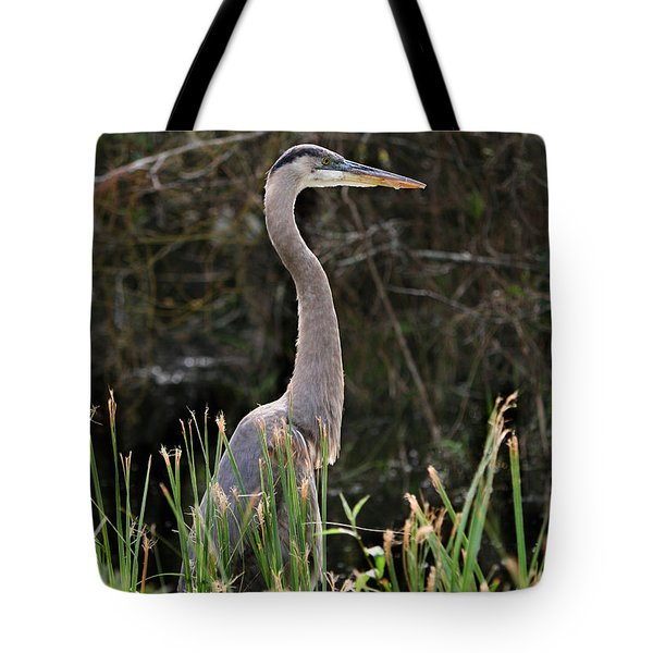 Blue Heron Of The Everglades Tote Bag by Kathleen Scanlan