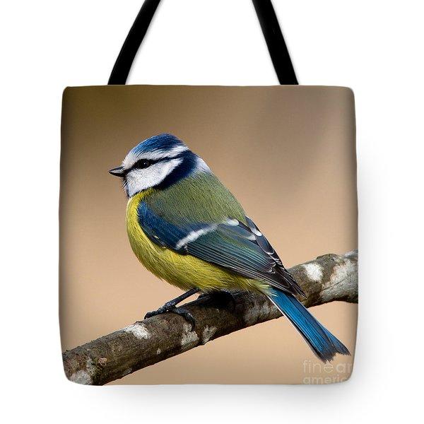 Blue Hood  Tote Bag