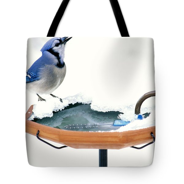 Blue Jay At Heated Birdbath Tote Bag by Steve and Dave Maslowski