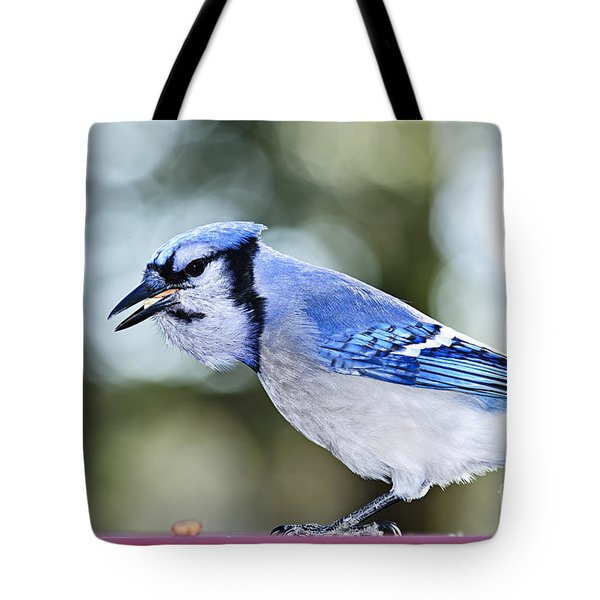 Blue Jay Bird Tote Bag by Elena Elisseeva