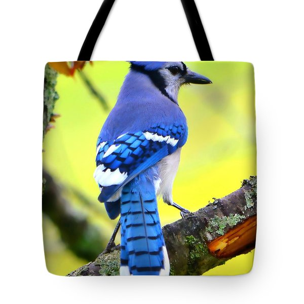 Tote Bag featuring the photograph Blue Jay by Deena Stoddard