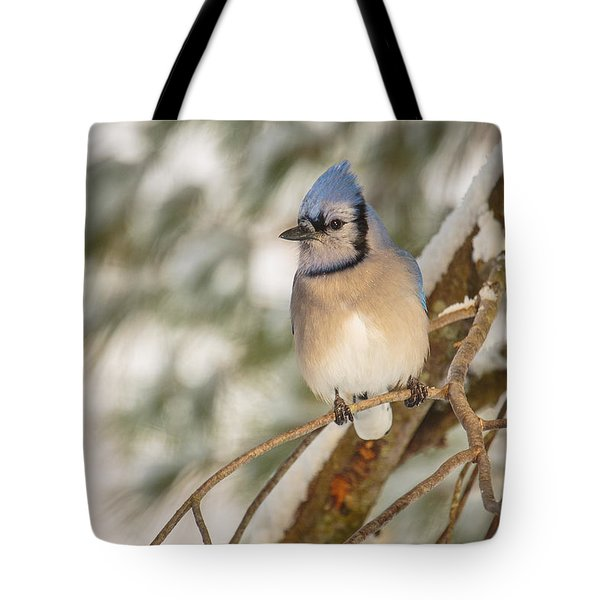 Blue Jay Tote Bag by Everet Regal
