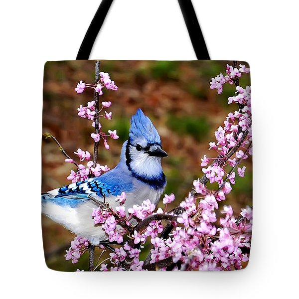 Blue Jay In The Pink Tote Bag