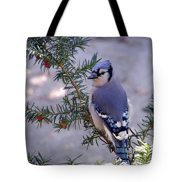 Blue Jay - Morning Visitor  Tote Bag by Susan  Dimitrakopoulos