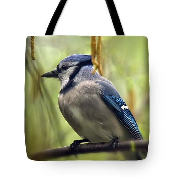 Blue Jay On A Misty Spring Day Tote Bag by Lois Bryan