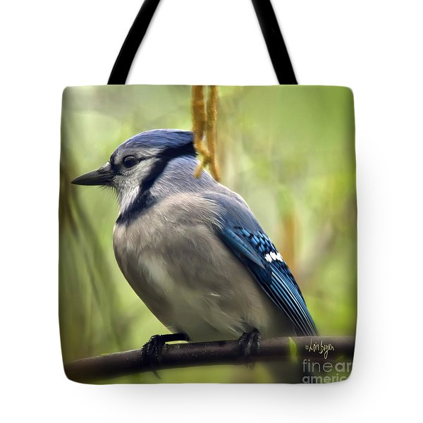 Blue Jay On A Misty Spring Day - Square Format Tote Bag by Lois Bryan