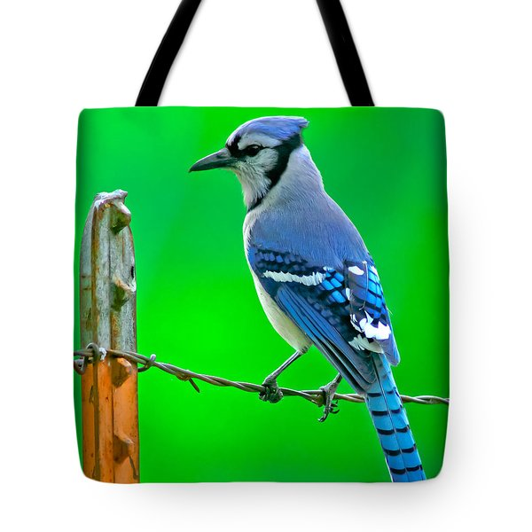 Blue Jay On The Fence Tote Bag by Robert Frederick