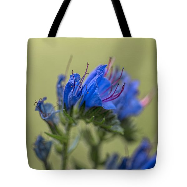 Tote Bag featuring the photograph Blue by Leif Sohlman