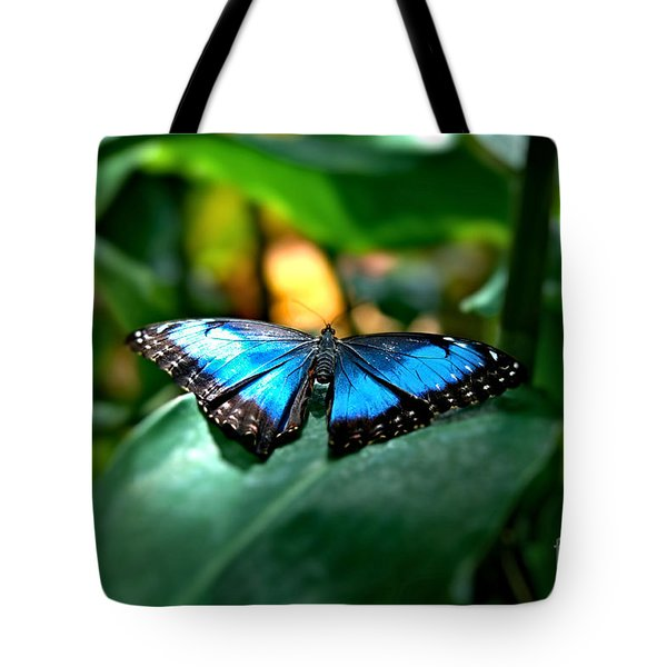 Blue Lit Butterfly Tote Bag