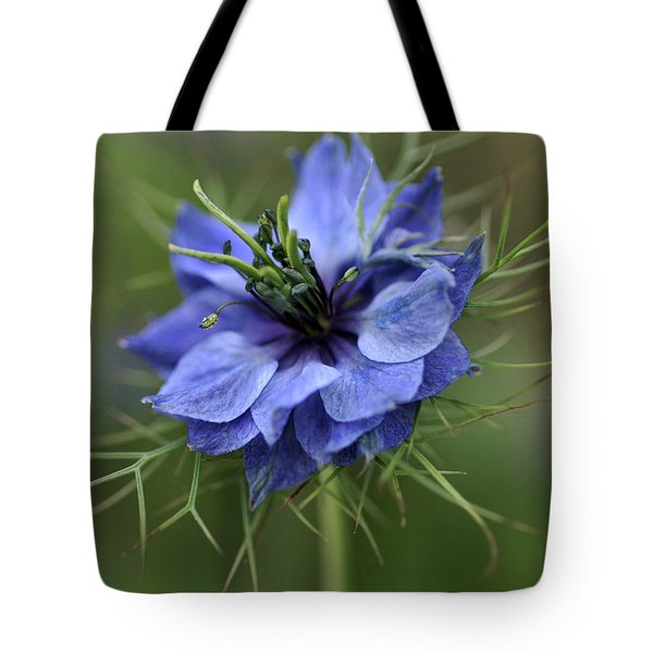 Tote Bag featuring the photograph Blue Love by Joy Watson