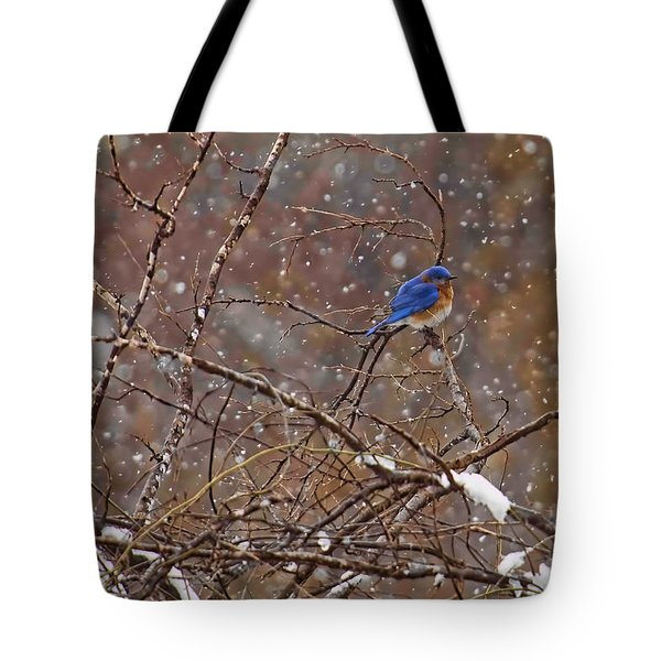 Tote Bag featuring the photograph Blue Norther by Gary Holmes