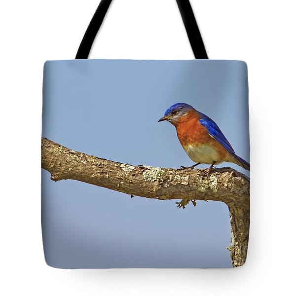 Blue On Blue Tote Bag by Gary Holmes