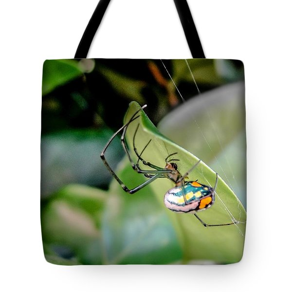 Tote Bag featuring the photograph Blue Orbweaver by TK Goforth