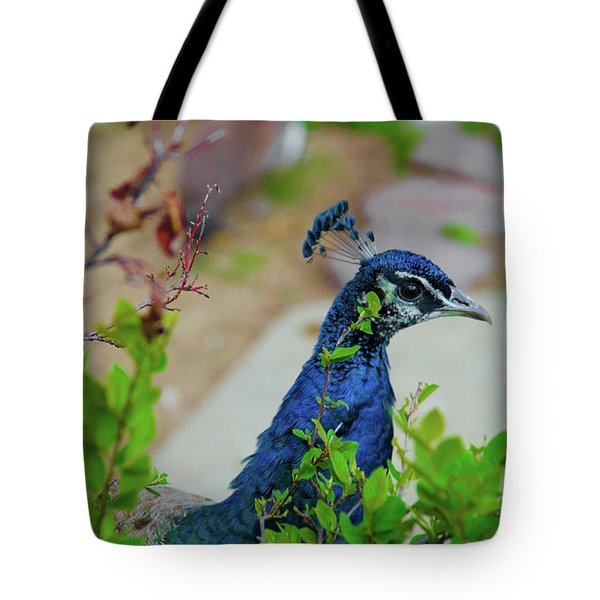 Blue Peacock Green Plants Tote Bag by Jonah  Anderson