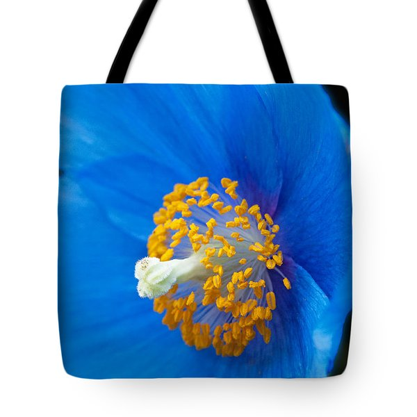 Blue Poppy Tote Bag