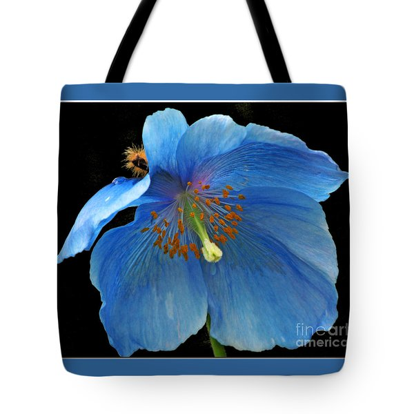 Blue Poppy On Black Tote Bag by Chris Anderson