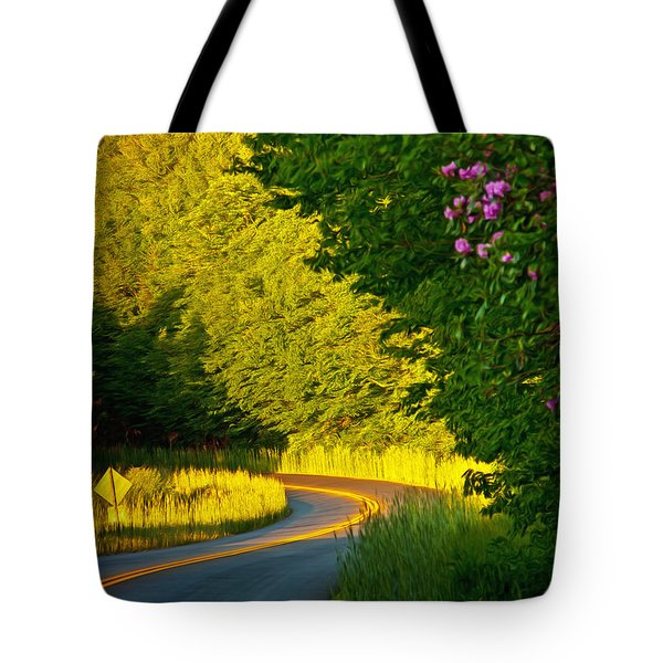 Tote Bag featuring the photograph Blue Ridge Afternoon by John Haldane