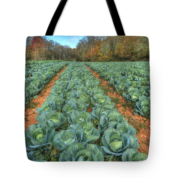 Blue Ridge Cabbage Patch Tote Bag by Jaki Miller
