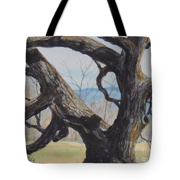 Blue Ridge Memories...sold Tote Bag