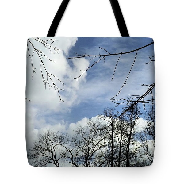 Tote Bag featuring the photograph Blue Skies Of Winter by Robyn King