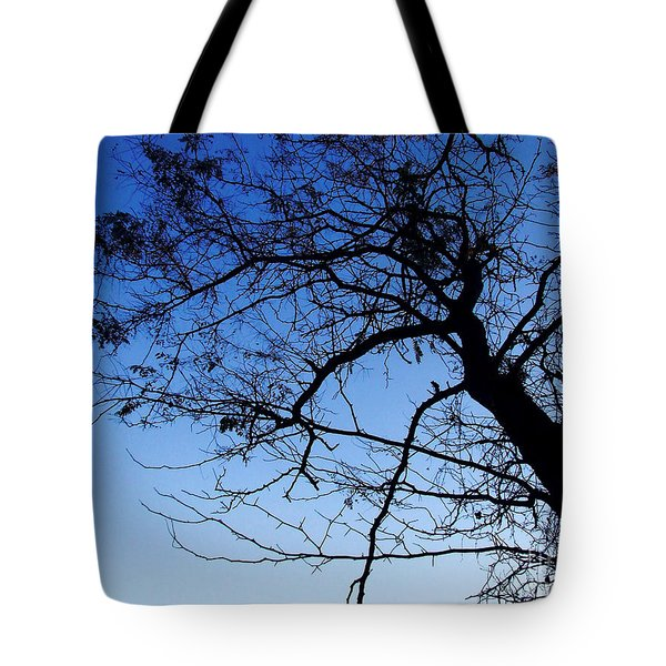 Tote Bag featuring the photograph Blue Sky by Andrea Anderegg