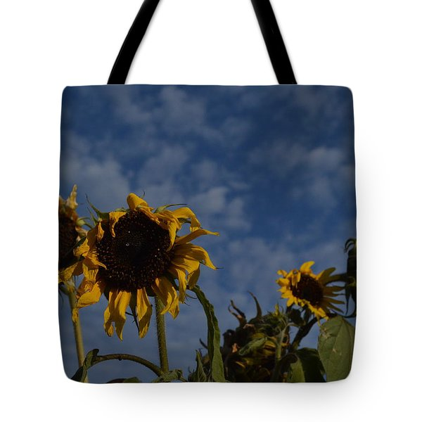 Tote Bag featuring the photograph Blue Sky Buddies by Brian Boyle