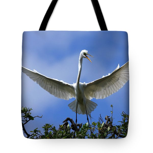 Blue Sky Landing Tote Bag