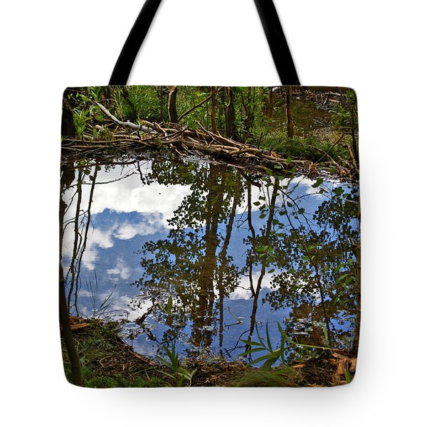 Tote Bag featuring the photograph Blue Sky Reflecting by Jeremy Rhoades