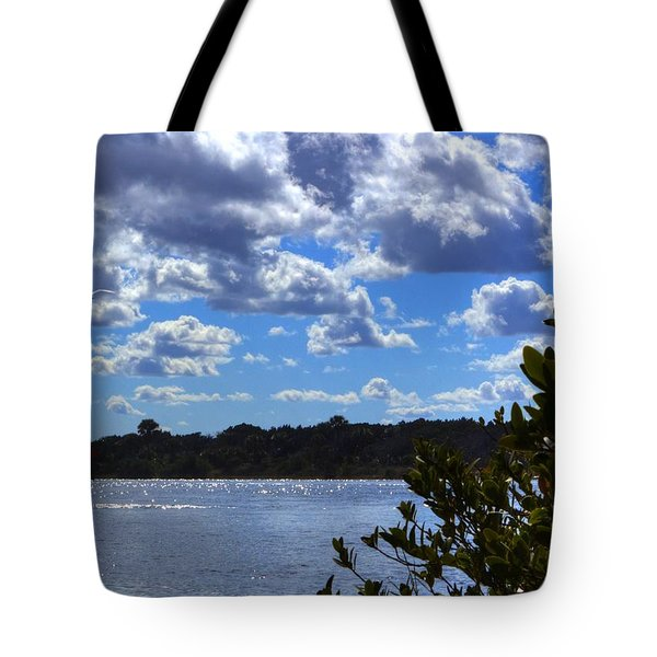 Tote Bag featuring the photograph Blue Sky by Tyson Kinnison