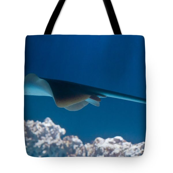 Tote Bag featuring the photograph Blue Spotted Fantail Ray by Eti Reid