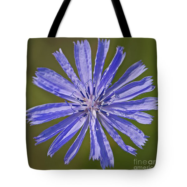 Blue Star... Tote Bag by Nina Stavlund