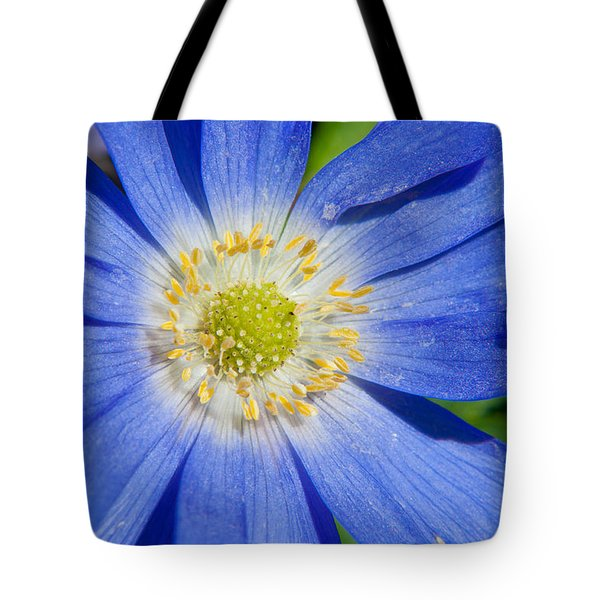 Blue Swan River Daisy Tote Bag by Tikvah's Hope