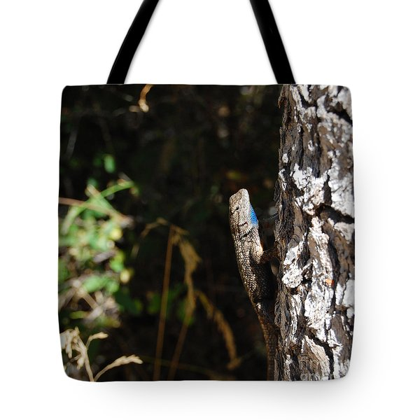 Tote Bag featuring the photograph Blue Throated Lizard 1 by Debra Thompson