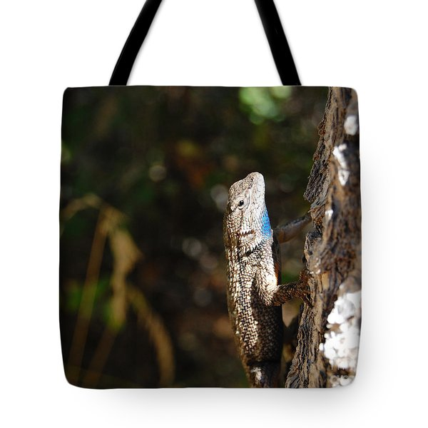 Tote Bag featuring the photograph Blue Throated Lizard 2 by Debra Thompson