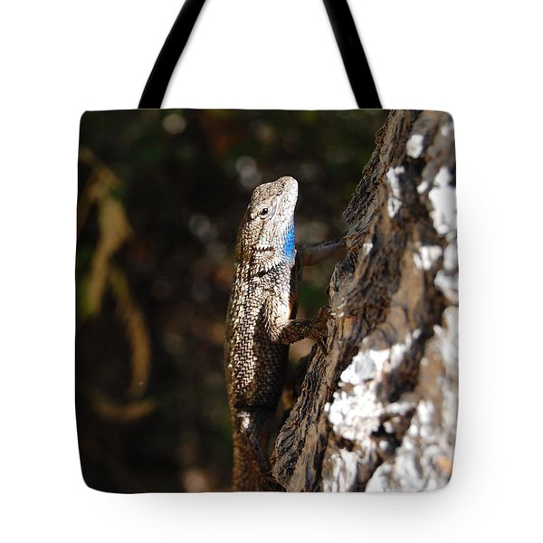 Tote Bag featuring the photograph Blue Throated Lizard 3 by Debra Thompson